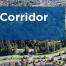 cambie-corridor-phase-3-landing